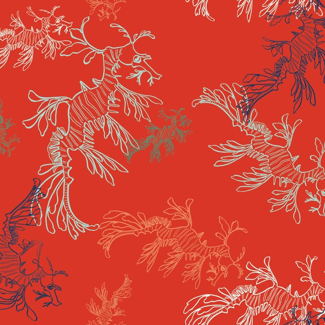 Thumb 1492199514 leafy sea dragons red 1000