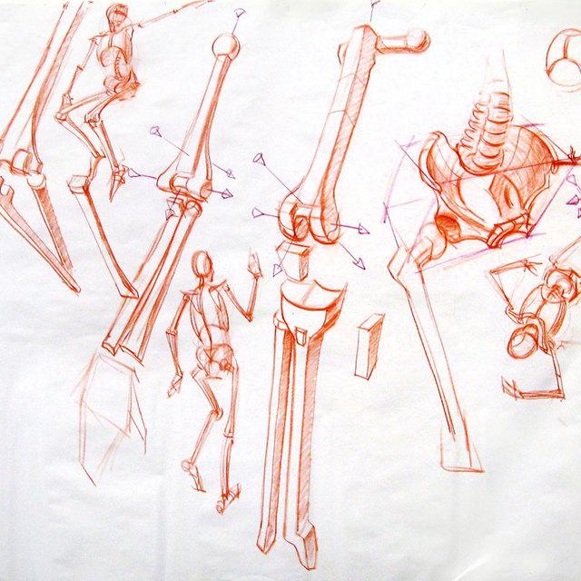 Thumb 1561413057 6 volumetric bones and gestural skeletons copy