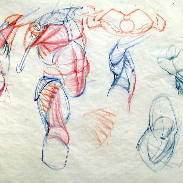 Thumb 1561413069 torso