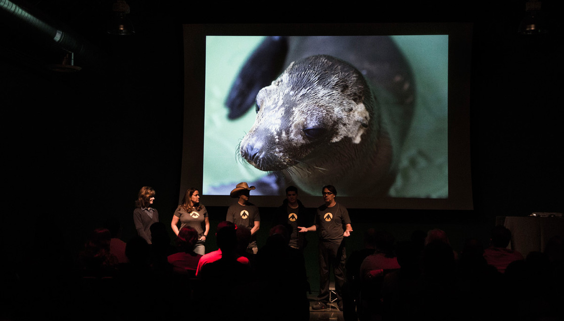 The Art Explorers team kicks off Animal; emphasizing the importance of raising awareness and educating the public on the beauty and fragility of wildlife.