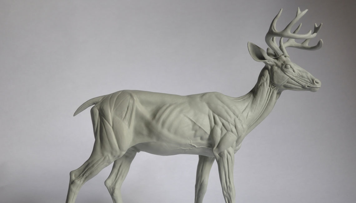 Steve Lord has been sculpting traditionally since the age of 19, and digitally since 2007