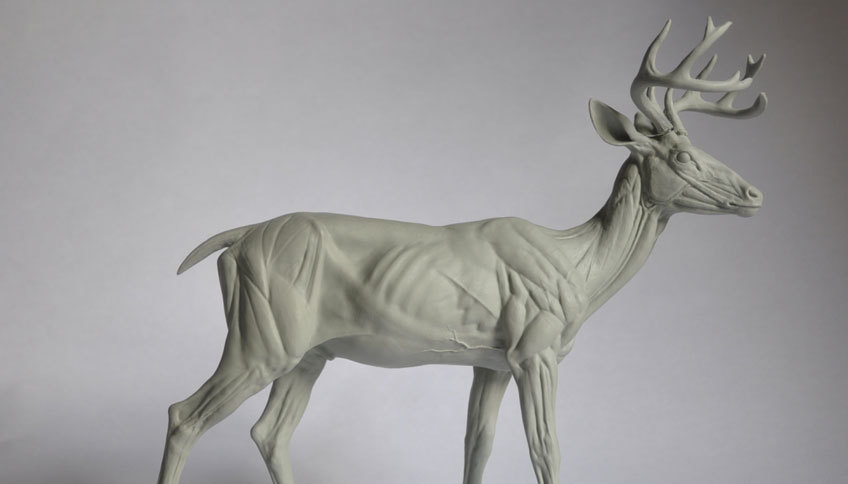 Steve Lord Discusses Digital Sculpting and Finding Perfect Animal References